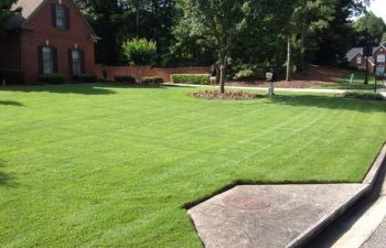 a manicured lawn maintained by Pannone's Lawn Pros & Landscaping