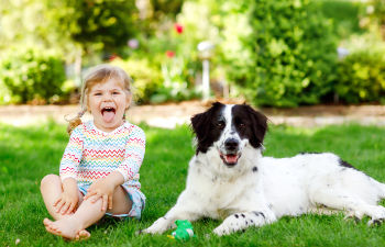 little girl playing with the dog in the backyard