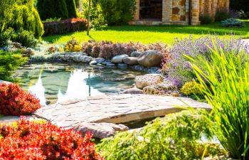 professionally landscaped back yard with water features